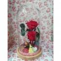 Bouquet Margarita Blanca