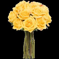 Ramo 12 Rosas Amarillas Extra