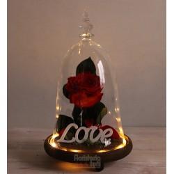 Cúpula Rosa Eterna Premium...