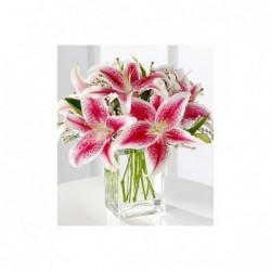 Bouquet Ciudad Jardín